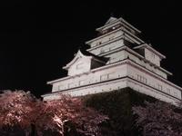 Tsurugajo